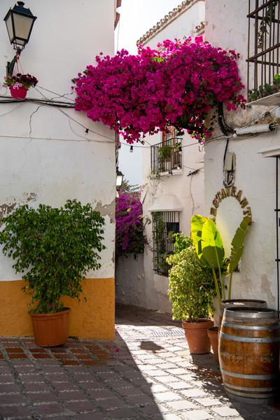 Marbella guide